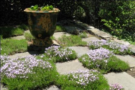 Blurred lines seeds of design for Checkerboard garden designs