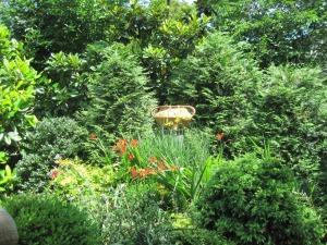Marco's garden