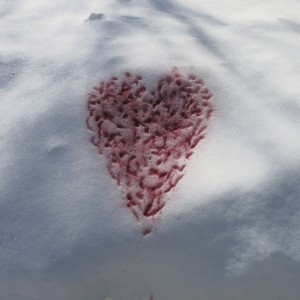 The Valentine's 'card' I made this year. The white canvas of snow was irresistable.