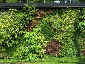 Vertical garden at Changi, Singapore