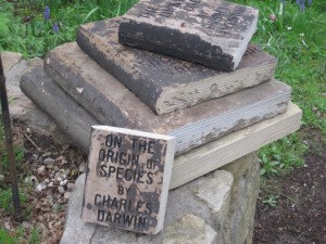 Books of stone in my garden. I had the titles engraved for a dose of fun and a bit of food for thought. This one says The Origin of Species by Charles Darwin.