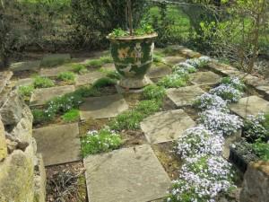 The checker-board garden